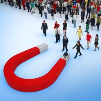 Training Recruitment marketing & Candidate Experience